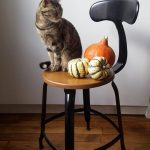 CHAISE_NICOLLE_45CM_BOIS_METAL_CHAT_HALLOWEEN_2019-600×1067